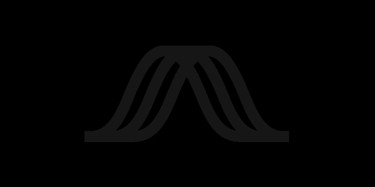 Bose AR icon